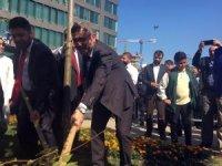 Üsküdar Çavuşbaşı Meydanı mor salkımlarla açıldı