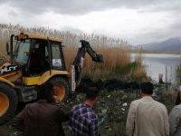 Van'da inci kefali balığını kurtarma operasyonu