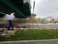 Antalya'da arı kovanı yüklü tır köprüye çarptı, arılar karayolunu istila etti