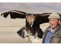 Moğolistan'da Kazak Türkü ata geleneği kartal avcılığını sürdürüyor