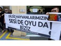 Hayvan hakları savunucularından Bakırköy Belediyesi'ne tepki