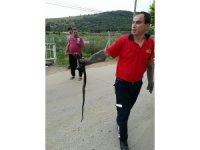 Aracın motoruna giren yılanı itfaiye ekipleri çıkardı