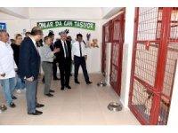 Polat, Hayvan Barınağı ve Doğal Yaşam Alanını ziyaret etti