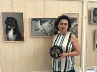 Sokak hayvanları için sanat sergisi