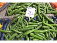 Salatalık fiyatları el yakıyor