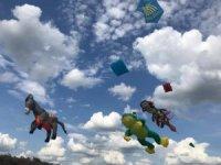 Mardinli uçurtma ustası Ukrayna'da Türkiye'yi temsil etti