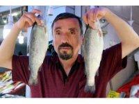 Ramazan, balıkçıların da yüzünü güldürdü