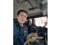 Alevler arasında kalan minik kaplumbağanın imdadına itfaiye ekipleri yetişti