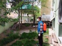 Bayburt Belediyesi ekipleri ilaçlama mesaisine devam ediyor
