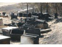 İçler acısı manzara orman yangını söndürülünce ortaya çıktı
