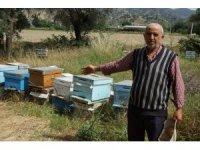 Arıları ölen vatandaşa kovan desteği