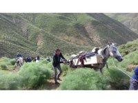 Koyun otlatırken yıldırım çarpan öğrenci öldü