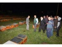 Kızılcahamam'da 75 çiftçiye 350 arılı kovan dağıtıldı