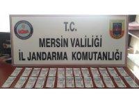 Mersin'de sahte parayla esnafı dolandıran kadın yakalandı