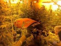 İzmir'de uyuşturucu madde üreticilerine operasyon