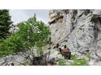 Dağda mahsur kalan keçileri kurtarmak için canlarını tehlikeye attılar