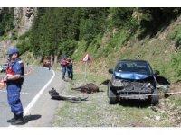 Rize'de kamyonet yol kenarında hayvan otlatan anne ile kızına çarptı: 1 ölü, 1 yaralı