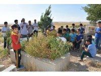 PKK'lı teröristlerin katlettiği köylülerin yakınlarından tepki