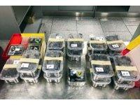 Almanya'da bir yolcunun bagajında 22 tarantula çıktı