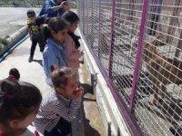 Minik öğrencilerden sevimli patilere ziyaret