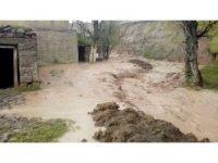 Erzurum'da sel menfezleri yıktı