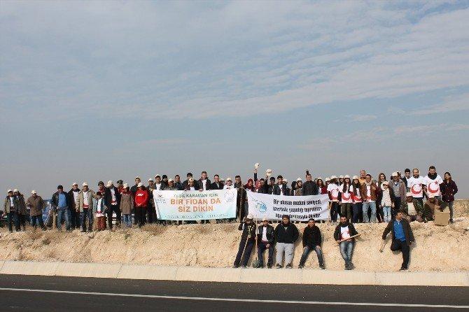 Karaman'da 180 Fidan Toprakla Buluştu