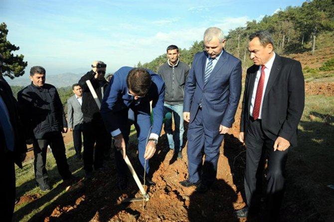 İpekböceği üretimi için 3 bin dut ağacı dikildi