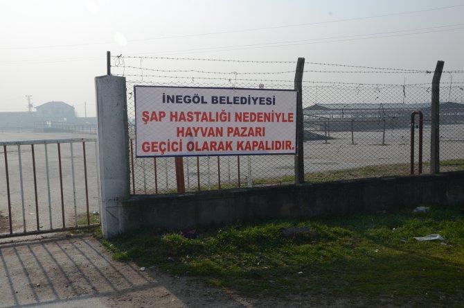 Şap hastalığı nedeniyle hayvan pazarı kapatıldı
