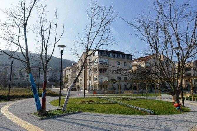Üniversiteli Ressamlar Ağaçları Giydirdi