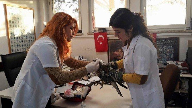 Bursa'da Şahin Operasyonu...