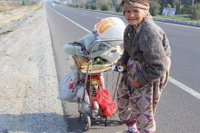 Meliha Ninenin Yaşam Koşulları Ve Hayvan Sevgisi Görenleri Şaşırtıyor