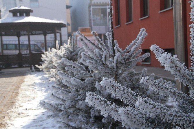 Ardahan'da Soğuk Hava Yaşamı Olumsuz Etkiliyor