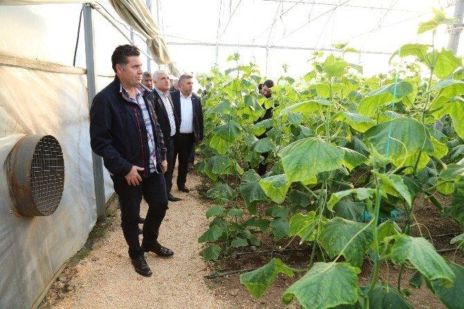 Başkan Kocadon, Yerel Üreticinin Yanında