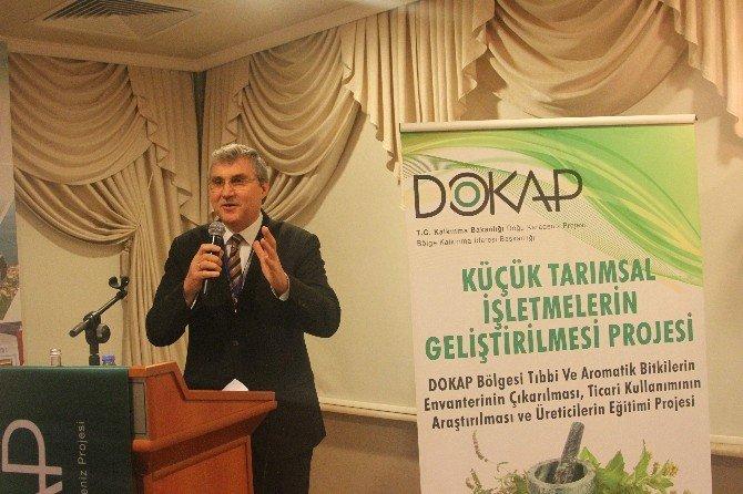 Karadeniz'de Tıbbi Ve Aromatik Bitkiler Ek Gelir Kapısı Olacak