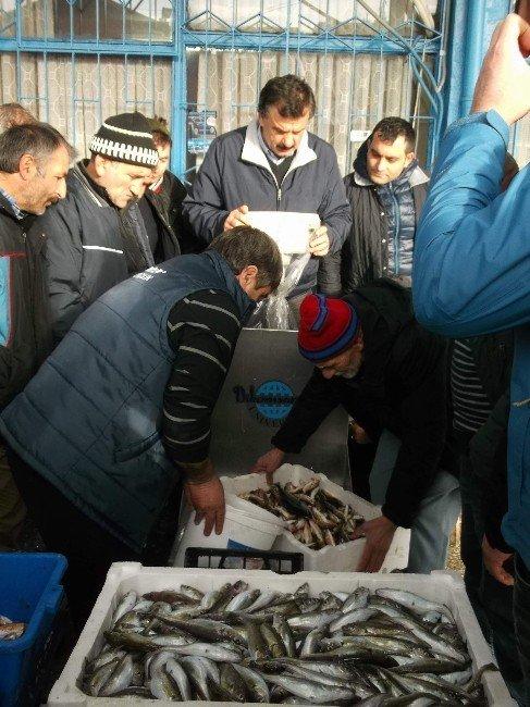 Karadeniz'de Hamsi Göçünü Tamamlamak Üzere