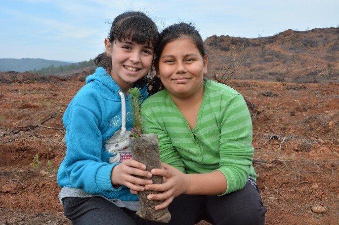 Yanan Ormanlık Alana Öğrenciler Fidan Dikti