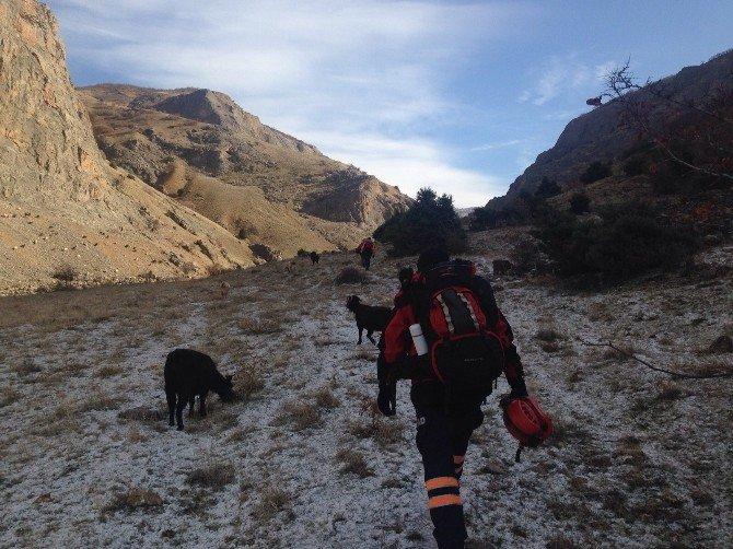 Çemişgezek'te Mahsur Kalan 8 Keçiyi AFAD Ekipleri Kurtardı