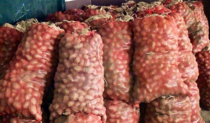 Arz fazlası yüzünden elde kalan patates, üreticisini üzdü
