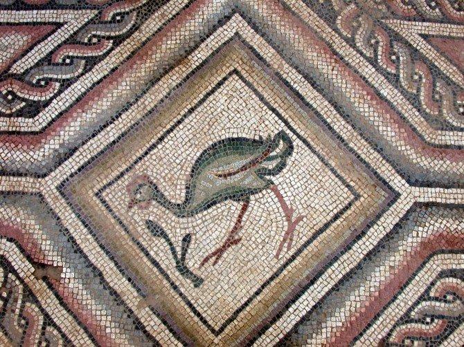 Doğal Mozaik Müzesi Kurtarılmayı Bekliyor