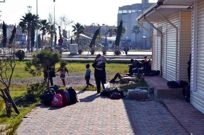 Ayvalık'ta 120 Suriyeli Göçmen Jandarmaya Yakalandı