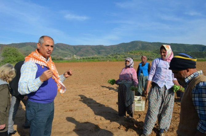 CHP'li Çam'dan çiftçinin yüzünü güldürecek teklif