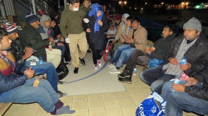 51 Kaçak Göçmen Ölümden Döndü