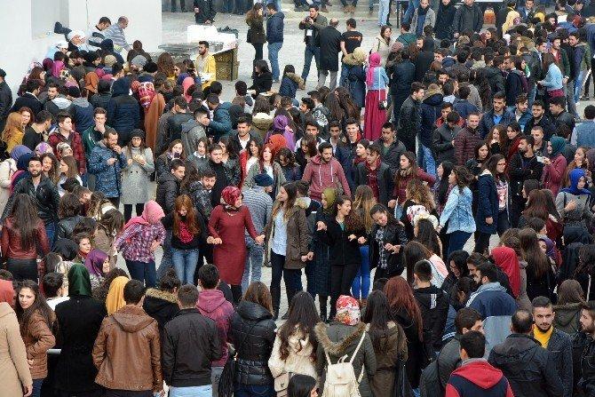 Sinop Üniversitesi'nden Hamsi Şenliği