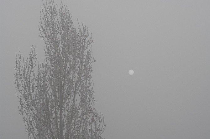 Yüksekova'da Göz Gözü Görmüyor