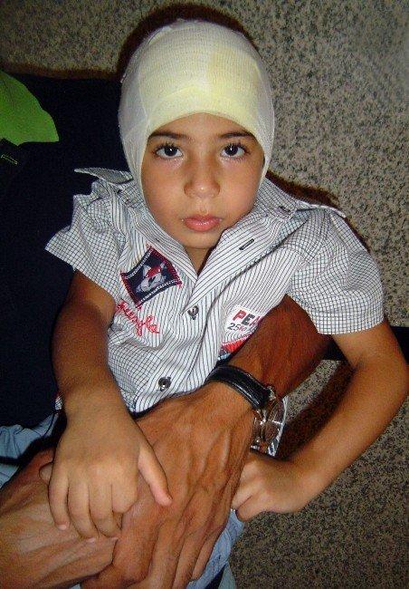 Kerem'in Kulağını Koparan Köpeğin Sahibine Bir Yıl Ceza