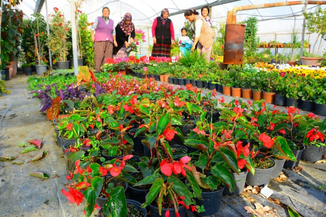 Muğla'nın süs bitkileri hanımlara emanet