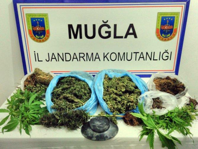Köyceğiz'de uyuşturucu operasyonu
