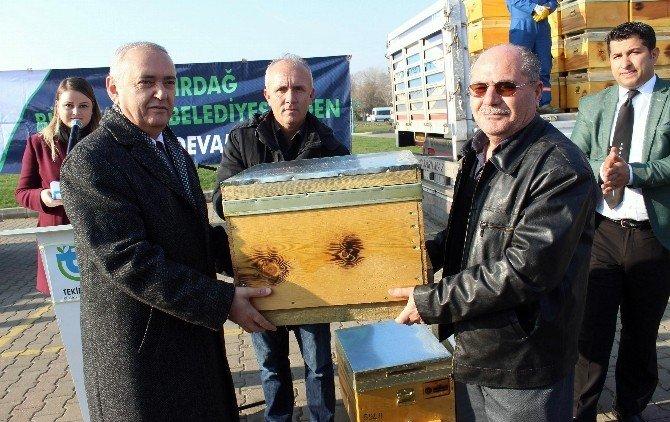 Büyükşehir'in Kovan Kampanyası Devam Ediyor