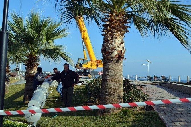 Didim'de Dikilecek Türk Bayrağı Yunan Adalarından Görülecek