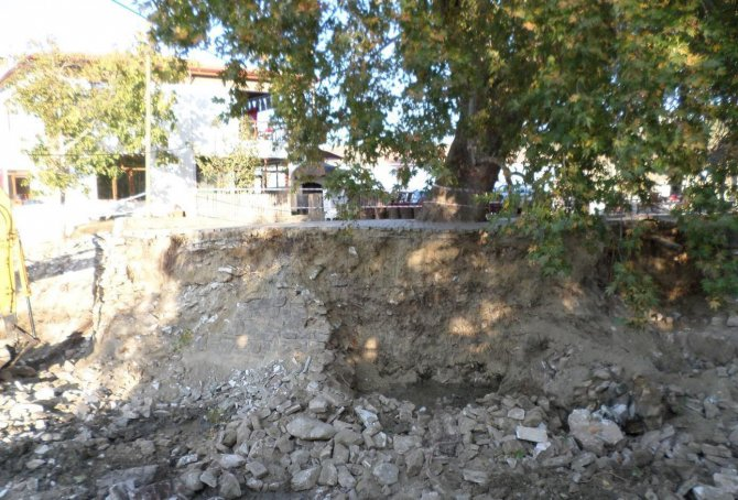 Muğla'da 600 yıllık çınar koruma altına alındı
